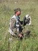 Соколиная охота сегодня