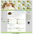 """Питомник декоративных кроликов """" Кролики Алены"""""""