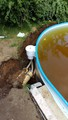 Установили скиммер, вода пока коричневая