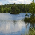 Продажа-покупка садовых участков, ДНП, СНТ, во Всеволожском районе, Ленинградской