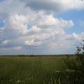 Продажа участков сельскохозйственного назначения, во Всеволожском районе, Ленинградской