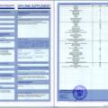 Дополнения к диплому СГА
