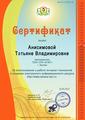 Сертификат за использование в работе интернет-технологий и создание электронного информационного ресурса