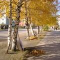 Улица Кирова во время субботника