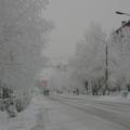 Тишина зимнего утра. Улица Кирова