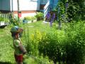 Хорошо в деревне летом-2012 и осенью-2013 !