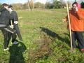 Посадка деревьев у Памятного креста - 15.10.2013