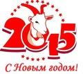 Новый 2015 год!