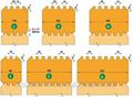 Газовые котлы отопления (и советы по СТРОИТЕЛЬСТВУ ДОМА)