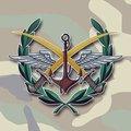 """СИРИЯ и РОССИЯ - помощь и защита от террористов """"Исламского государства""""."""