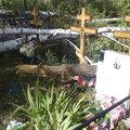 Кладбище до и после работ - фото