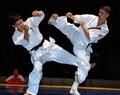 Правила соревнований по кекусинкай каратэ