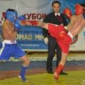 В СК Жастар проходит Кубок Мира по смешанным видам боевых искусств
