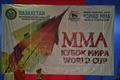Казахстан - обладатель Кубка Мира ММА-2012 (фото)