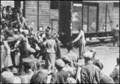 Книга Сулумбека Мамилова, посвященная 100-летию Дикой Дивизии