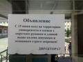 Pain-ball в Чечне