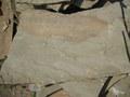 плитняк песчаник серый с разводами