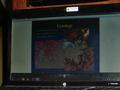 Бахыт Карнакбаев: ОТЧЕТ О СОВМЕСТНОЙ РАБОТЕ СОКОЛЬНИКОВ  СЛОВАКИИ  И СРЕДНЕЙ АЗИИ / REPORT ON THE JOINT WORK OF FALCONERS OF SLOVAKIA AND THE MIDDLE ASIA