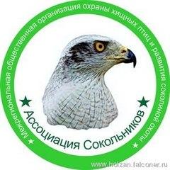 Межрегиональная общественная организация охраны хищных птиц и развития соколиной охоты «Ассоциация Сокольников» проводит слёт сокольников в городе