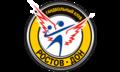 """Гандбольный клуб """"Ростов-Дон"""" (Ростов-на-Дону)"""