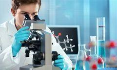 Установим отцовство по ДНК за 5 дней со 100% точностью за счет проведения тестов ДНК на новейших генетических анализаторах компании Applied Biosystems