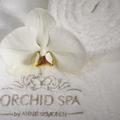 Orchid Spa by Anne Sémonin -ПОБЕДИТЕЛЬ 2012 года