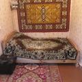 Дом в поселке Томаровка
