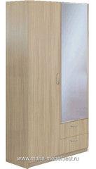 Шкаф 2-х дверный с зеркалом Эконом (5.13) (Ясень шимо)