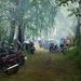 Шишкин. М-72шки в лесу.
