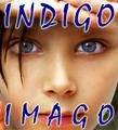 Дети Индиго
