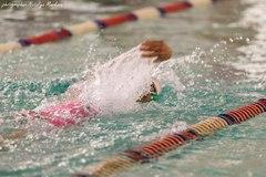 Чемпионат и первенство Челябинской области по плаванию 2016