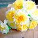 фото бумажных цветов.