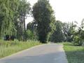 Продается земельный участок в селе Сосновка Озерского района Московской области