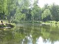 Продается дом в СНТ Приозерье вблизи села Белые Колодези Озерского района Московской области