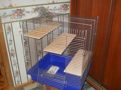 Клетка №1/1 (универсальная) 2500 рублей
