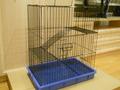 Клетка № 8 (Комфорт) Цена 3400 рублей