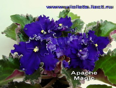 Apache Magic