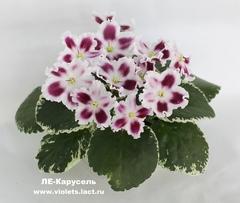 ЛЕ-Карусель
