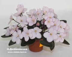 Н-Дюймовочка