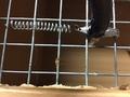 Шланг для оцинкованных ниппельных поилок 8 на 10 мм