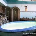 парилка на дровах водяная пушка, бассейн с холодной и теплой водой, бильярд, ЖКИ телевизор, двд с караоке и спутниковой антенной