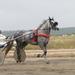 Бега на ипподроме Висим (03.08.14)