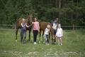 выходим пасти лошадей после занятий