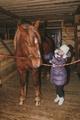 дети сами чистят лошадь