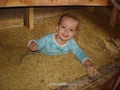Нормальные родители детей обычно в капусте находят, а конники - люди особенные - находят их исключительно в овсе!
