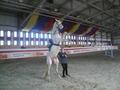 наш манеж и лошадки