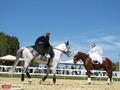 Детский конный спорт в Свердловской области
