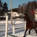 обучение ВЕ в зимнее время