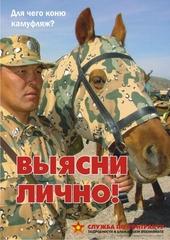 Для чего коню камуфляж? Подробности в ближайшем военкомате!