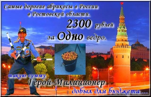 Самые дорогие абрикосы  в  Ростовской области. Или просто позор